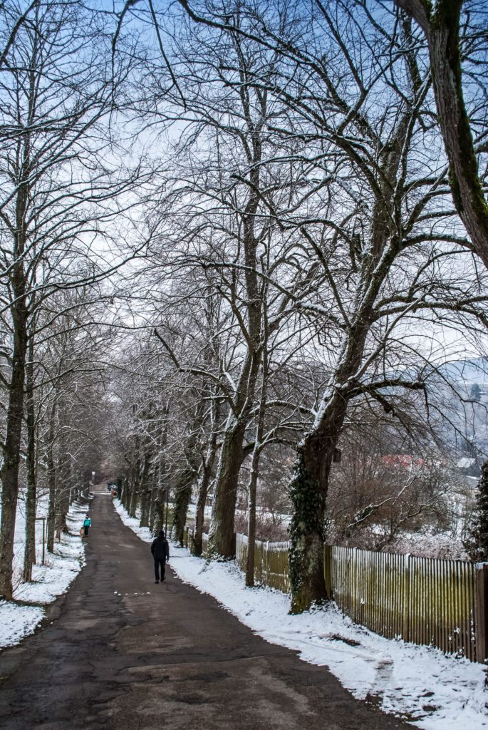 The grounds are gorgeous, even in the snow.